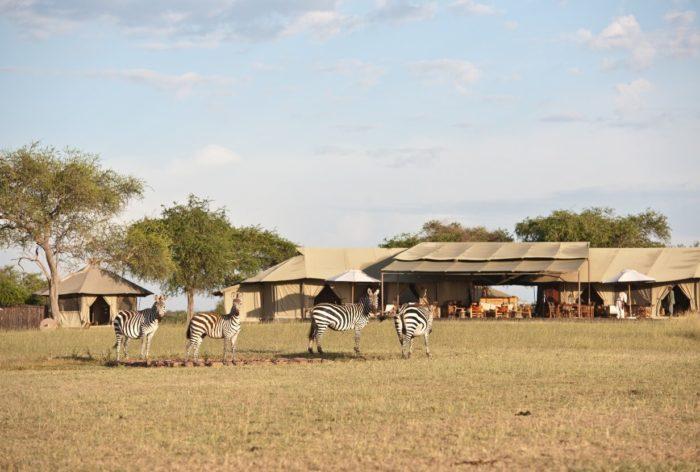 Sabora Tented Camp
