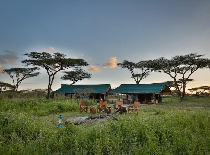 Serengeti ecosysteem en Zanzibar – 10 nachten
